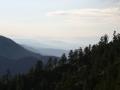 5-landscape-5-san-bernadino-mountains-eileen-gano
